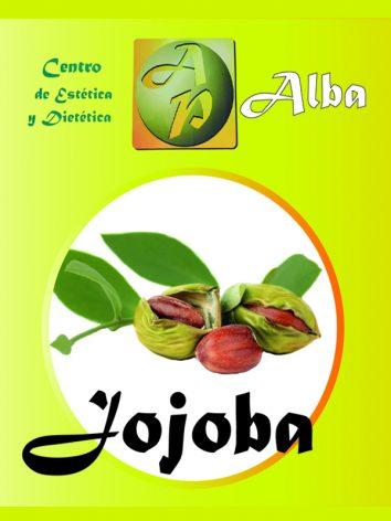 Jojoba Aceite 250 ML