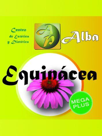 Equinácea 762 mg – 30 caps