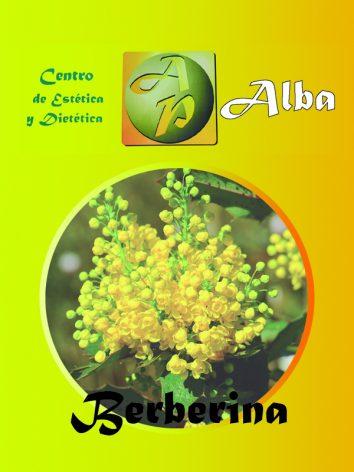 Berberina – 60 caps