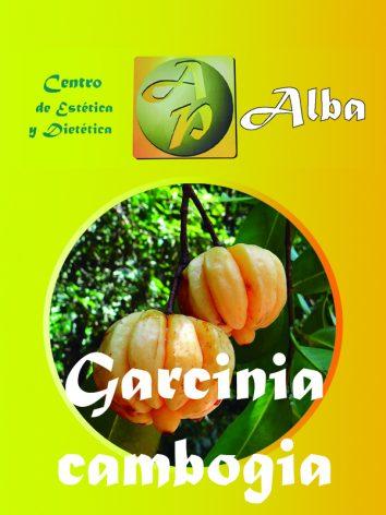 Garcinia cambogia – 60 caps