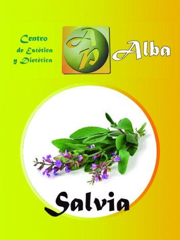 Salvia – 30 caps